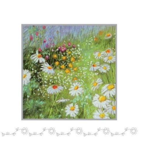 Daisies Notelet